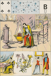Quatre de trèfle Melle Lenormand interprétation